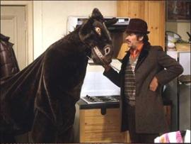 pantomimehorse