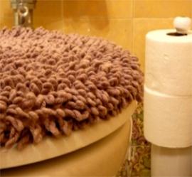 toiletseatcover